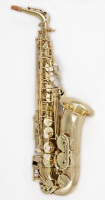 Professional Lacquer Alto Saxophone Model AS-641L (AS-641L)